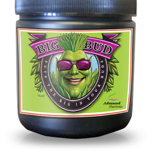 Advanced-Nutrients-Big-Bud-Powder